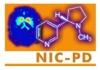 NIC-PD Logo